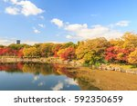 all tree leaf changing color in ... | Shutterstock . vector #592350659
