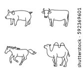 mammals vector icons | Shutterstock .eps vector #592369601