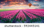 Small photo of Flying on the balloon over the field of blooming hyacinth flowers. Colorful spring sunrise in the countryside. Artistic style post processed photo. Creative collage.