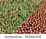 crowd of small symbolic figures ... | Shutterstock . vector #592462205