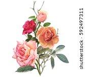 illustration of beautiful... | Shutterstock . vector #592497311
