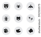 set of 9 editable zoo icons....