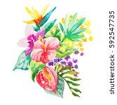 watercolor flowers illustration.... | Shutterstock . vector #592547735