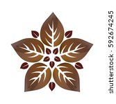 leaves natural concept icon... | Shutterstock .eps vector #592674245