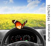 steering wheel with butterfly...