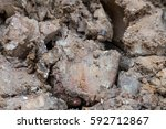 close up wet clod clay soil at... | Shutterstock . vector #592712867