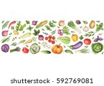 watercolor vegetables and herbs ... | Shutterstock . vector #592769081