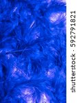 Colored Feathers Fluffy Blue...