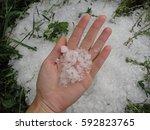 After Hailstorm. Large Hail...