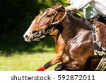 Stock photo competing with their horses jockey 592872011