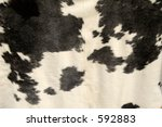 tanned cowhide on display. | Shutterstock . vector #592883