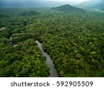 Aerial View River Rainforest Latin - Fine Art prints