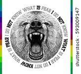 bear face t shirt print   Shutterstock .eps vector #593009147
