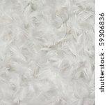 white bird feathers background   Shutterstock . vector #59306836