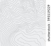 topographic map background... | Shutterstock .eps vector #593119229