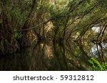 danube delta | Shutterstock . vector #59312812