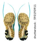 Small photo of shoe soles old isolate and white background