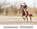 Stock photo young rider girl on bay horse galloping towards a hurdle on show jumping competition 593246201