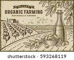 olive organic farming landscape | Shutterstock . vector #593268119
