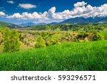 spring alpine landscape with...   Shutterstock . vector #593296571
