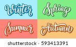 winter spring summer autumn... | Shutterstock .eps vector #593413391