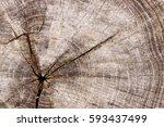 close up wooden cut texture.... | Shutterstock . vector #593437499