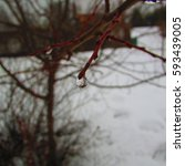 Small photo of water droop in winter