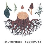 natural decorative elements.... | Shutterstock .eps vector #593459765