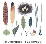 natural decorative elements.... | Shutterstock .eps vector #593459819