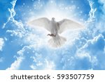 holy spirit bird flies in skies ... | Shutterstock . vector #593507759