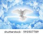 white dove symbol of love and... | Shutterstock . vector #593507789