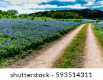 An Old Texas Country Dirt Road...