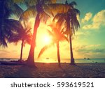 sunset beach with palm trees... | Shutterstock . vector #593619521