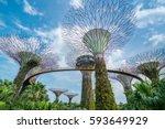 singapore   february 10  2017   ... | Shutterstock . vector #593649929