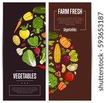 fresh vegetable farming flyers... | Shutterstock .eps vector #593653187