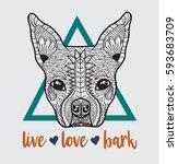 boston terrier french bulldog... | Shutterstock .eps vector #593683709