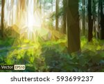vector low poly triangular... | Shutterstock .eps vector #593699237