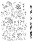 line drawing of various plants... | Shutterstock . vector #593702681