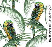 tropical seamless floral... | Shutterstock .eps vector #593794007