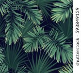 dark tropical background with...   Shutterstock .eps vector #593849129