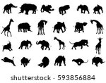 a safari african animal... | Shutterstock . vector #593856884