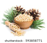 pine nuts with branches and...   Shutterstock . vector #593858771