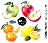 Watercolor Lemon  Tangerine ...