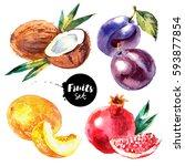 watercolor pomegranate  melon ...   Shutterstock . vector #593877854