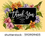 vector exotic illustration of... | Shutterstock .eps vector #593909405