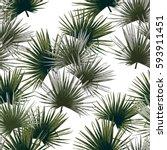 palm pattern seamless tropical... | Shutterstock .eps vector #593911451