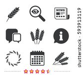 agricultural icons. gluten free ... | Shutterstock .eps vector #593913119