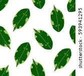 seamless foliage pattern.... | Shutterstock .eps vector #593941295