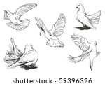 hand drawn vector sketches of... | Shutterstock .eps vector #59396326