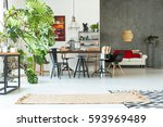 functional apartment with... | Shutterstock . vector #593969489